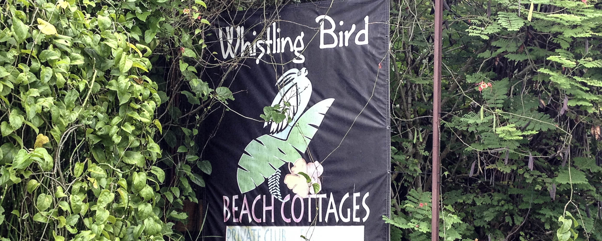 Whistling Bird Beach Cottages - Negril Jamaica